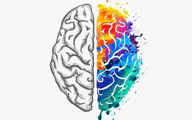 Illustration of human brain with left side in black an white and right side colored in with various colors