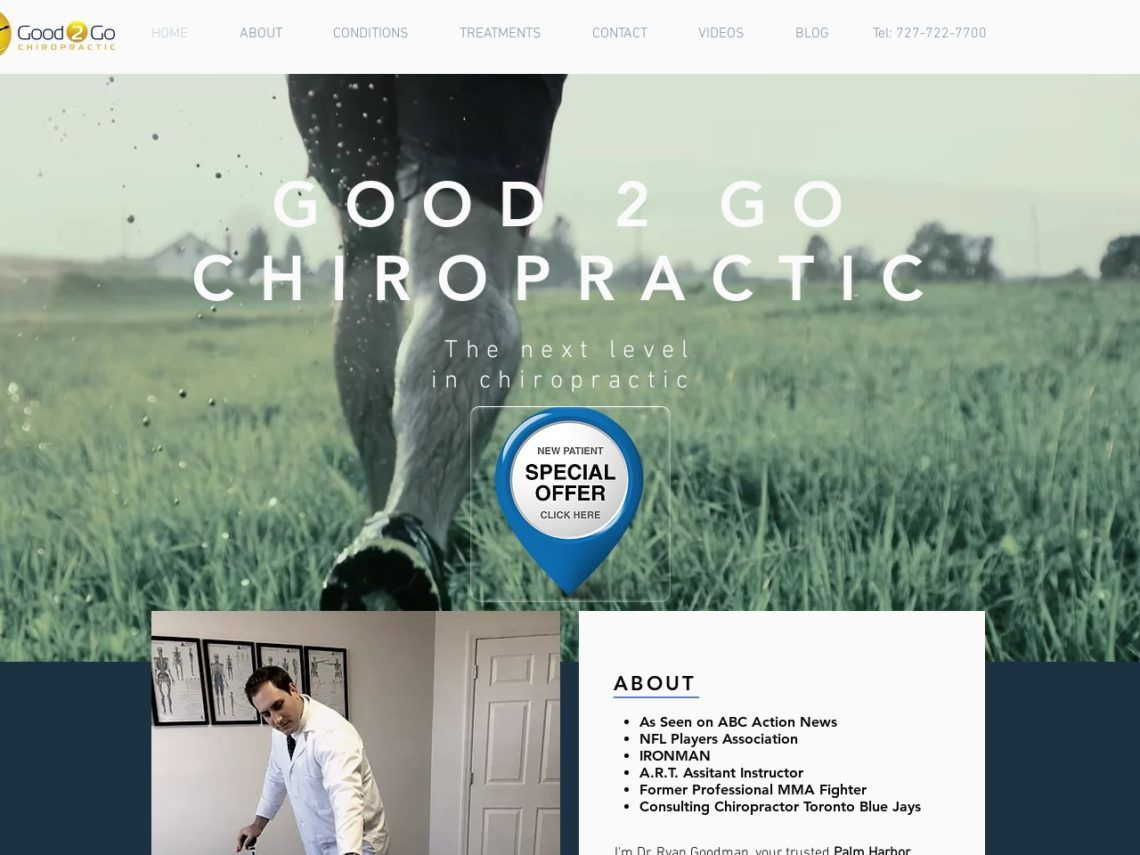 Good 2 Go Chiropractic Website Screenshot from url good2gochiro.com